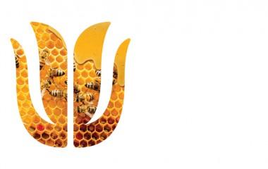 Obrazek przedstawia logo kultury jamneńskiej czyli kwiat tulipanu.